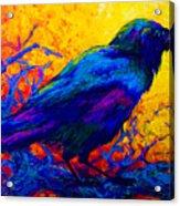Black Onyx - Raven Acrylic Print by Marion Rose