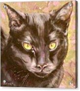 Black Pearl Acrylic Print by Susan A Becker