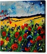 Blue And Red Poppies 45 Acrylic Print by Pol Ledent
