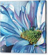 Blue Acrylic Print by Angela Armano