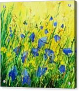 Blue Bells  Acrylic Print by Pol Ledent