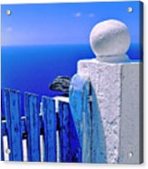 Blue Gate Acrylic Print by Silvia Ganora