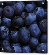 Blueberries Close-up - Vertical Acrylic Print by Carol Groenen