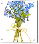 Bouquet Of Forget-me-nots Acrylic Print by Elena Elisseeva