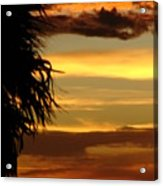 Breaking Dawn Acrylic Print by Priscilla Richardson