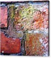 Brick Wall Acrylic Print by Roberto Alamino