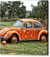 Bugs In The Patch Again Acrylic Print by Scott  Wyatt