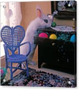 Bunny In Small Room Acrylic Print by Garry Gay