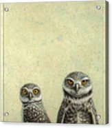 Burrowing Owls Acrylic Print by James W Johnson