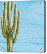 Cactus Jack Acrylic Print by Joseph Palotas