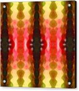 Cactus Vibrations 2 Acrylic Print by Amy Vangsgard