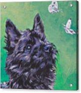 Cairn Terrier Acrylic Print by Lee Ann Shepard