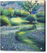 California Spring Acrylic Print by Karin  Leonard