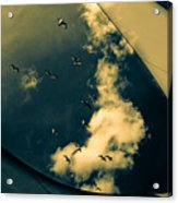 Canvas Seagulls Acrylic Print by Bob Orsillo