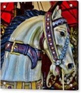 Carousel Horse - 7 Acrylic Print by Paul Ward