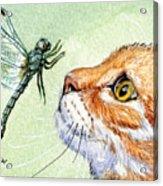 Cat And Dragonfly  Acrylic Print by Svetlana Ledneva-Schukina