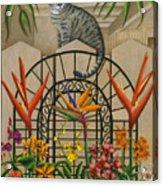 Cat Cheetah's Fence Acrylic Print by Carol Wilson