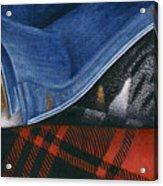 Cat In Denim Jacket Acrylic Print by Carol Wilson