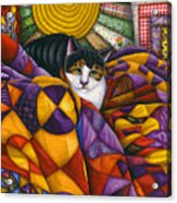 Cat In Quilts Acrylic Print by Carol Wilson