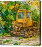Caterpillar On Backyard Acrylic Print by Natoly Art