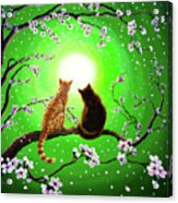 Cats On A Spring Night Acrylic Print by Laura Iverson