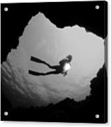 Cave Diver - Bw Acrylic Print by Dave Fleetham - Printscapes