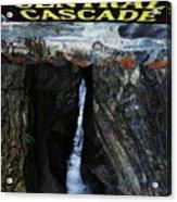 Central Cascade Bridge View Acrylic Print by InTheSane DotCom
