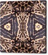 Cheetah Print Acrylic Print by Maria Watt