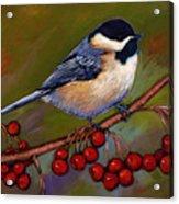 Cherries And Chickadee Acrylic Print by Johnathan Harris
