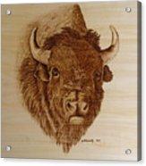 Chief Acrylic Print by Jo Schwartz