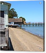 China Camp In Marin Ca Acrylic Print by Wingsdomain Art and Photography