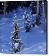 Christmas Tree In Snow Acrylic Print by Utah Images