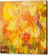 Color Sinfonia Acrylic Print by Lutz Baar