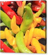Colorful Chili Peppers  Acrylic Print by Carol Groenen