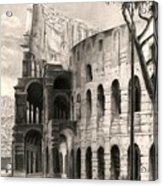 Colosseo Acrylic Print by Norman Bean