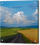 Country Road Acrylic Print by Pavel  Filatov