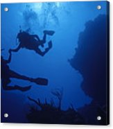 Couple Of Divers Holding Hands Acrylic Print by Sami Sarkis