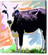 Cow Time Acrylic Print by David Lloyd Glover