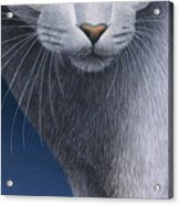 Cropped Cat 5 Acrylic Print by Carol Wilson
