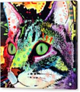 Curiosity Cat Acrylic Print by Dean Russo