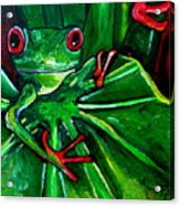 Curious Tree Frog Acrylic Print by Patti Schermerhorn