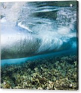 Curl Of Wave From Underwater Acrylic Print by Dave Fleetham - Printscapes