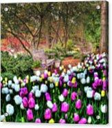 Dallas Arboretum Acrylic Print by Tamyra Ayles