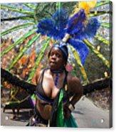 Dc Caribbean Carnival No 12 Acrylic Print by Irene Abdou