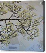 Dear Artist Acrylic Print by Leah  Tomaino