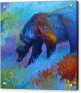 Denali Grizzly Bear Acrylic Print by Marion Rose