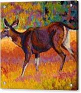 Doe IIi Acrylic Print by Marion Rose