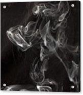 Dog Smoke Acrylic Print by Garry Gay