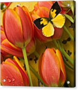 Dogface Butterfly And Tulips Acrylic Print by Garry Gay