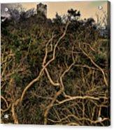 Dolwyddelan Castle Acrylic Print by Meirion Matthias
